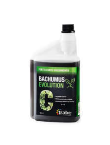 Bachumus Evolution C Trabe