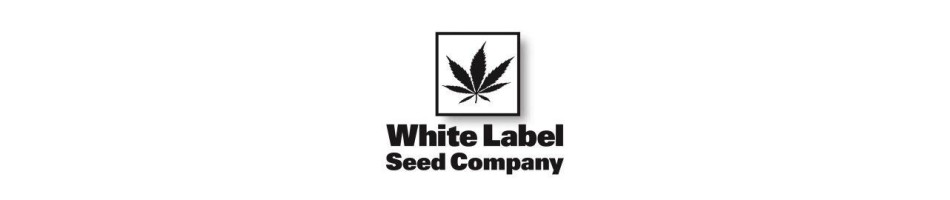 Sensi White Label