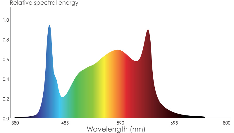 Espectro MP
